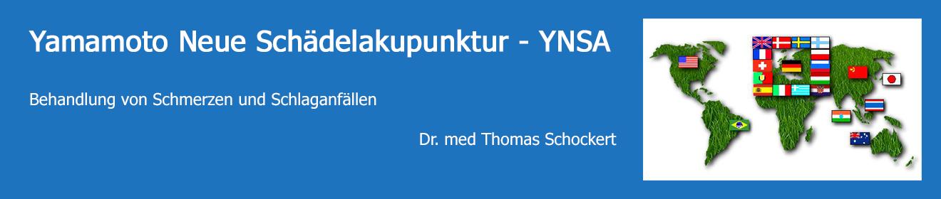 Yamamoto Neue Schädelakupunktur - YNSA